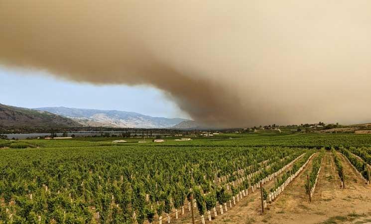 عمليات إجلاء السكان من الغرب الأمريكي مستمرة جراء الحرائق- (صور)